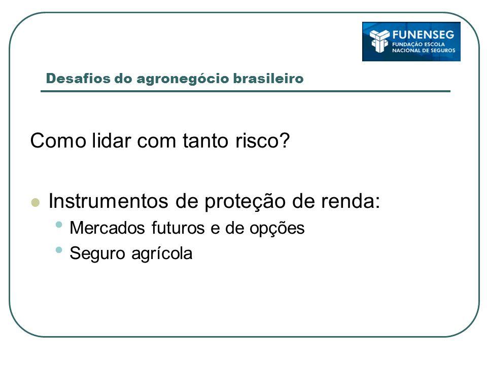 Desafios do agronegócio brasileiro