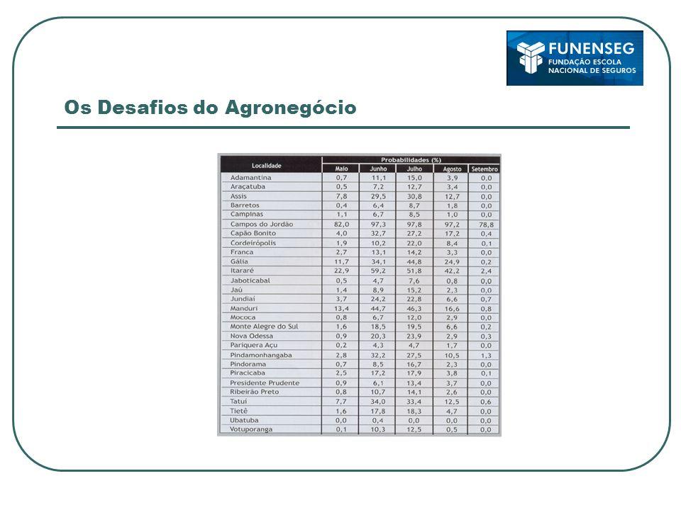 Os Desafios do Agronegócio