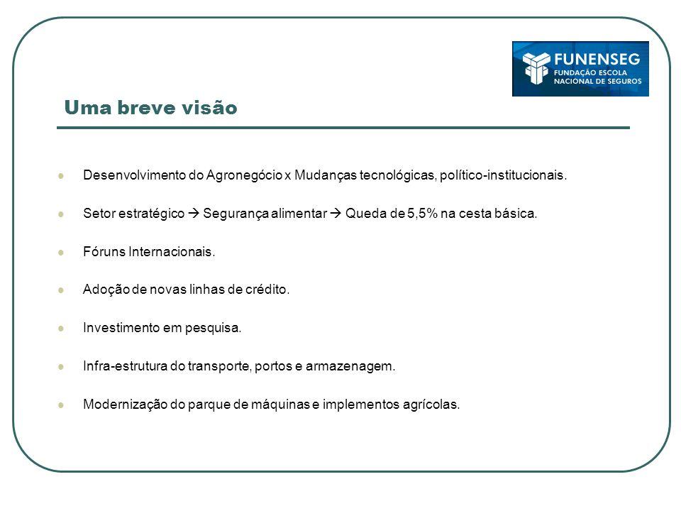 Uma breve visão Desenvolvimento do Agronegócio x Mudanças tecnológicas, político-institucionais.