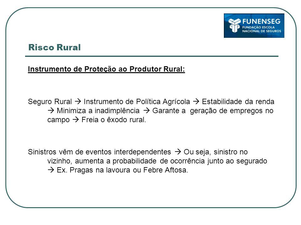 Risco Rural Instrumento de Proteção ao Produtor Rural: