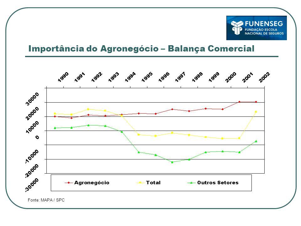 Importância do Agronegócio – Balança Comercial