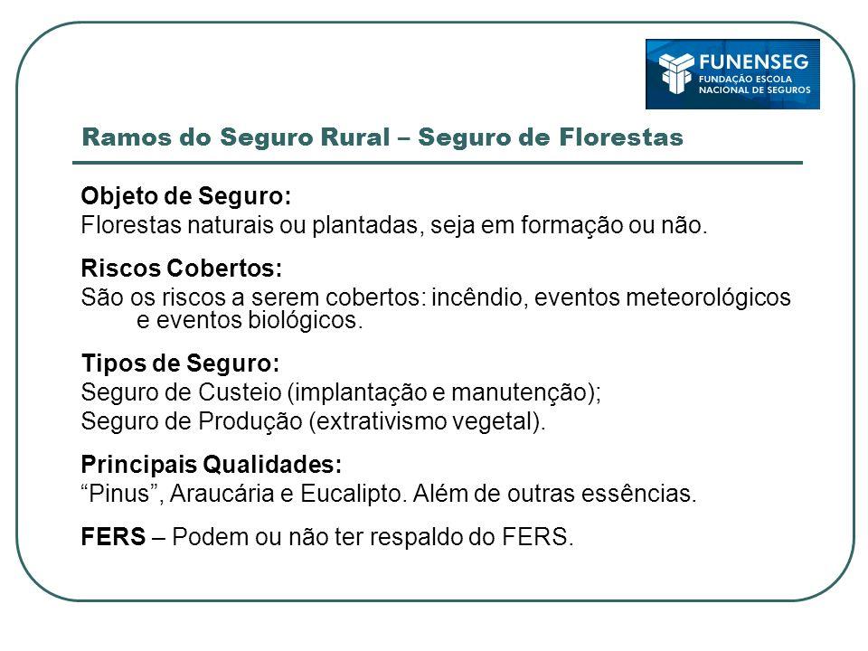 Ramos do Seguro Rural – Seguro de Florestas