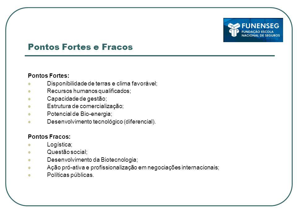 Pontos Fortes e Fracos Pontos Fortes: