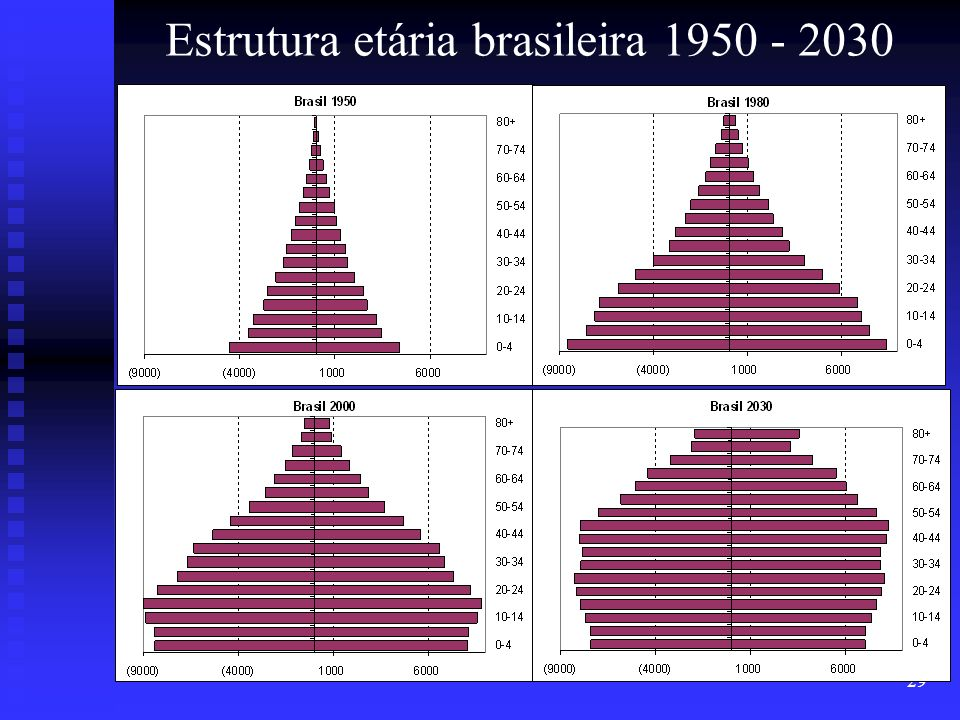 Estrutura etária brasileira 1950 - 2030