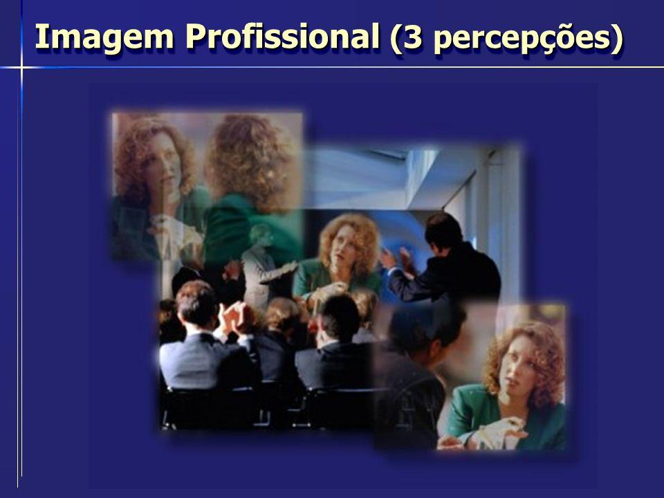 Imagem Profissional (3 percepções)