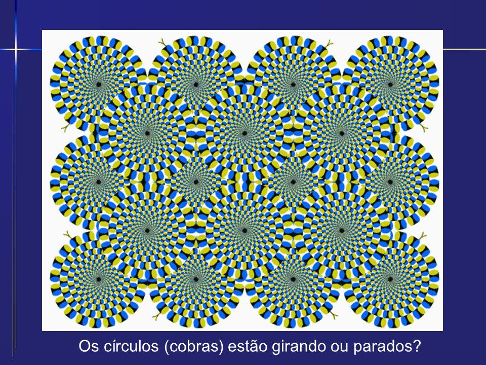 Os círculos (cobras) estão girando ou parados