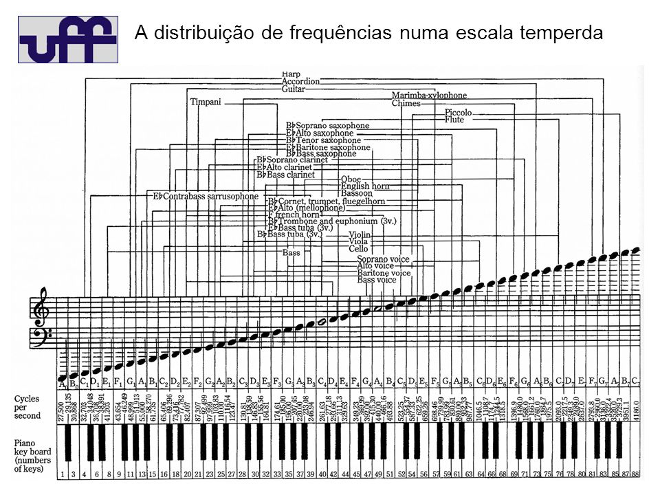A distribuição de frequências numa escala temperda