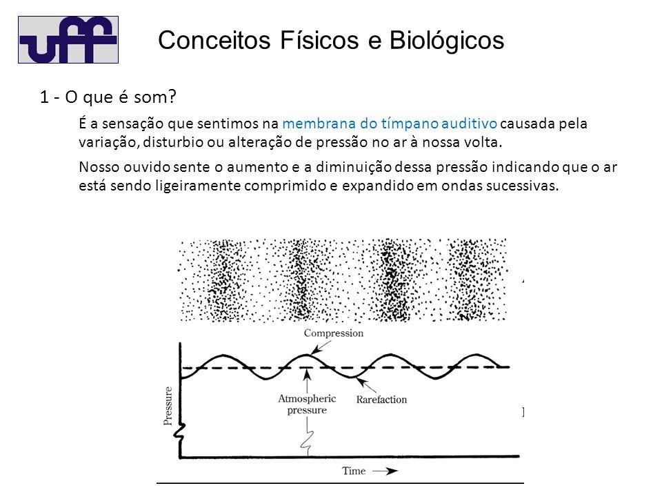 Conceitos Físicos e Biológicos