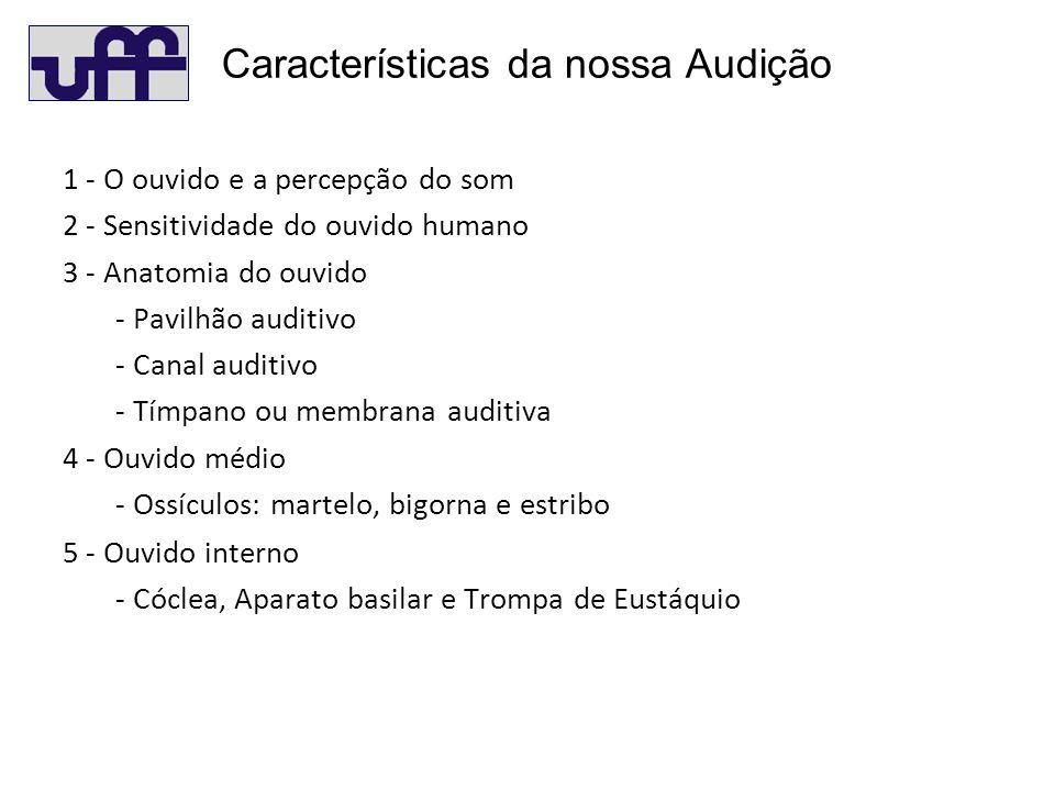 Características da nossa Audição