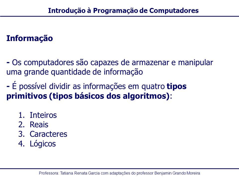 Informação - Os computadores são capazes de armazenar e manipular uma grande quantidade de informação.