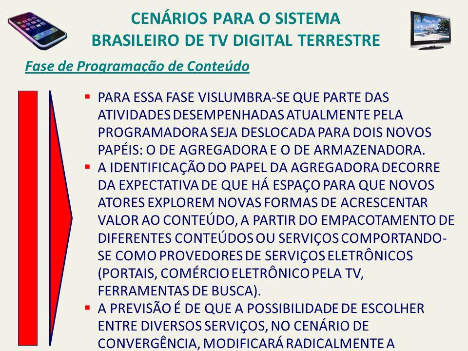 Cenários para o sistema brasileiro de TV digital terrestre