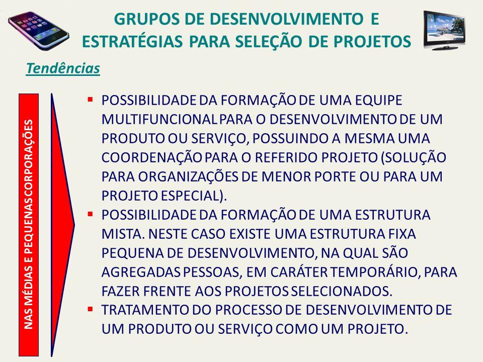 GRUPOS DE DESENVOLVIMENTO E ESTRATÉGIAS PARA SELEÇÃO DE PROJETOS