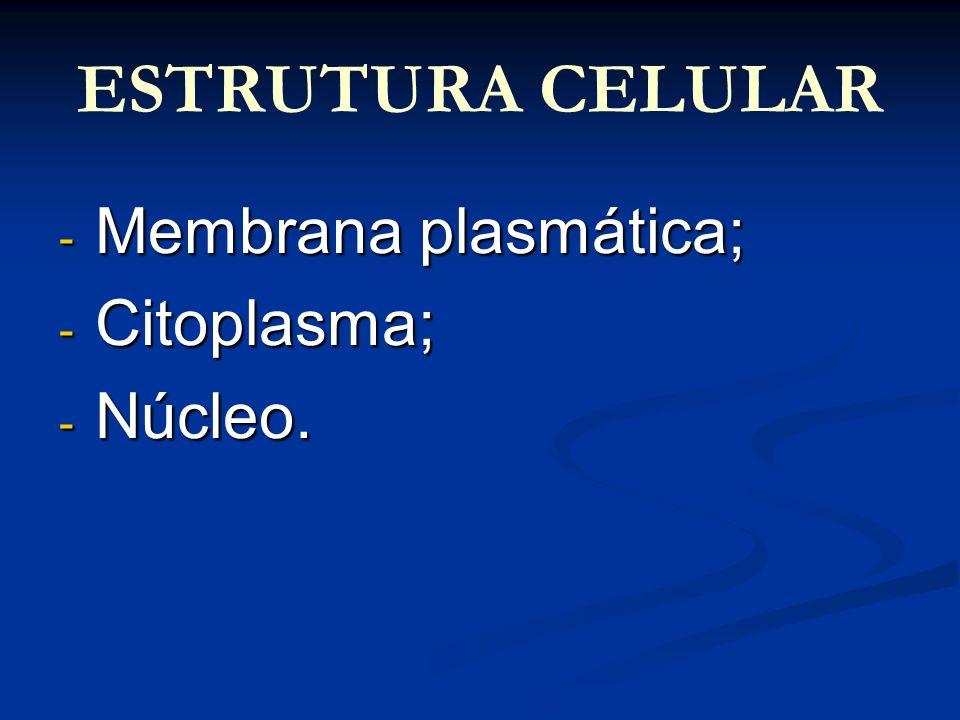 ESTRUTURA CELULAR Membrana plasmática; Citoplasma; Núcleo.