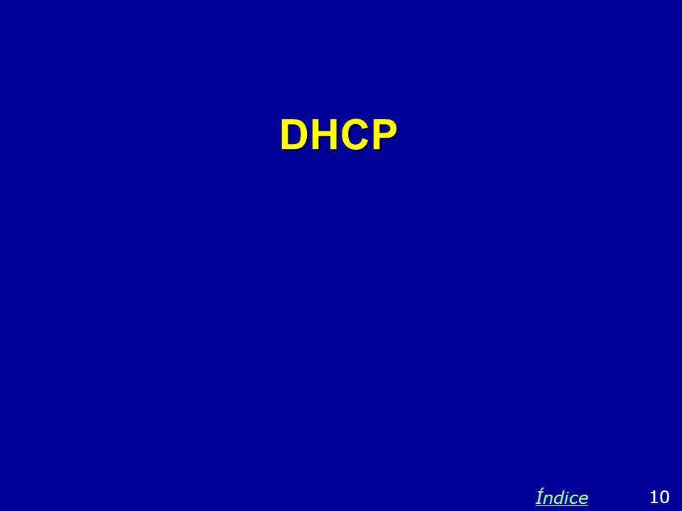 DHCP Índice 10