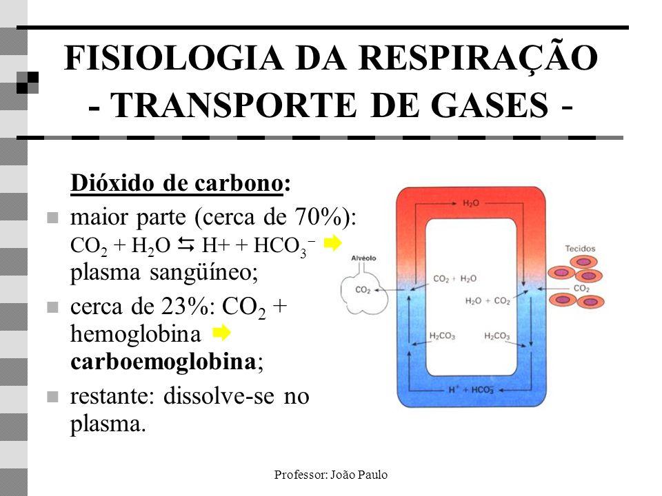 FISIOLOGIA DA RESPIRAÇÃO - TRANSPORTE DE GASES -