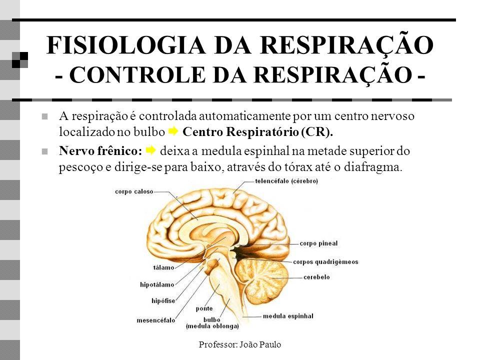FISIOLOGIA DA RESPIRAÇÃO - CONTROLE DA RESPIRAÇÃO -