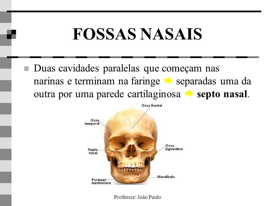 FOSSAS NASAIS