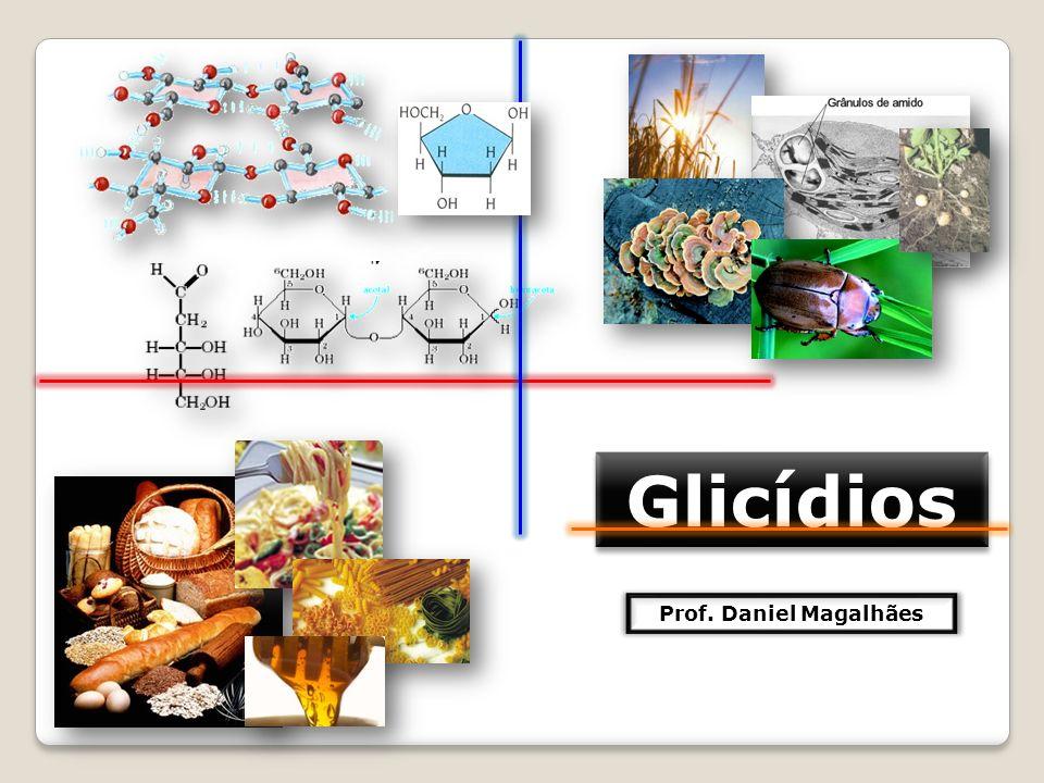 Glicídios Prof. Daniel Magalhães