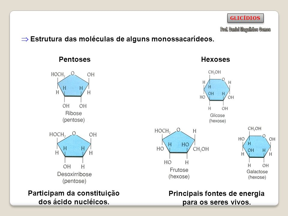  Estrutura das moléculas de alguns monossacarídeos.