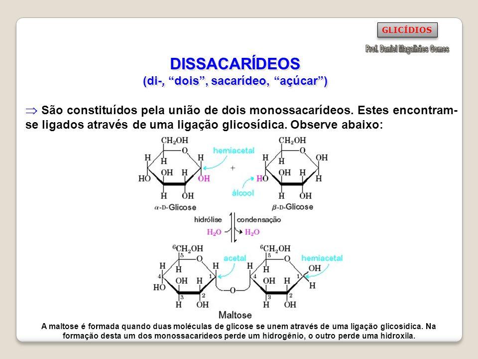 DISSACARÍDEOS (di-, dois , sacarídeo, açúcar )