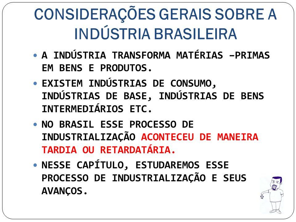 CONSIDERAÇÕES GERAIS SOBRE A INDÚSTRIA BRASILEIRA