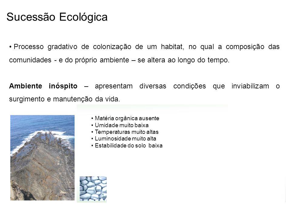 Sucessão Ecológica