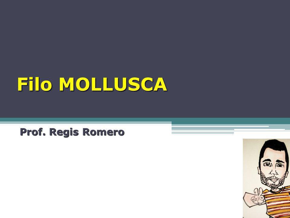 Filo MOLLUSCA Prof. Regis Romero