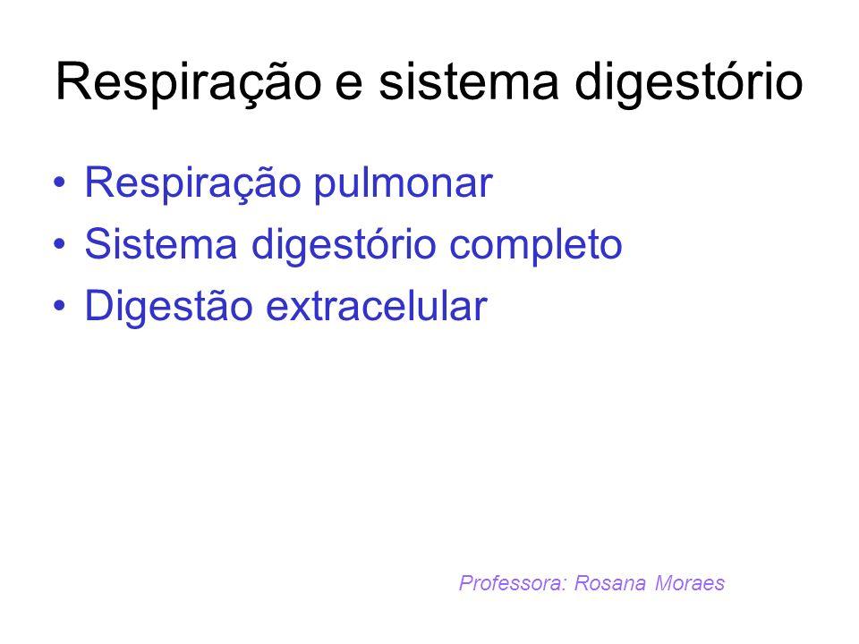 Respiração e sistema digestório