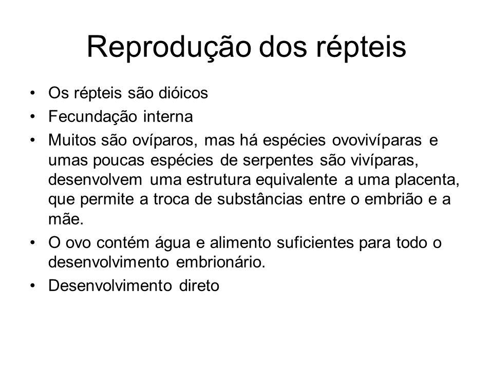 Reprodução dos répteis