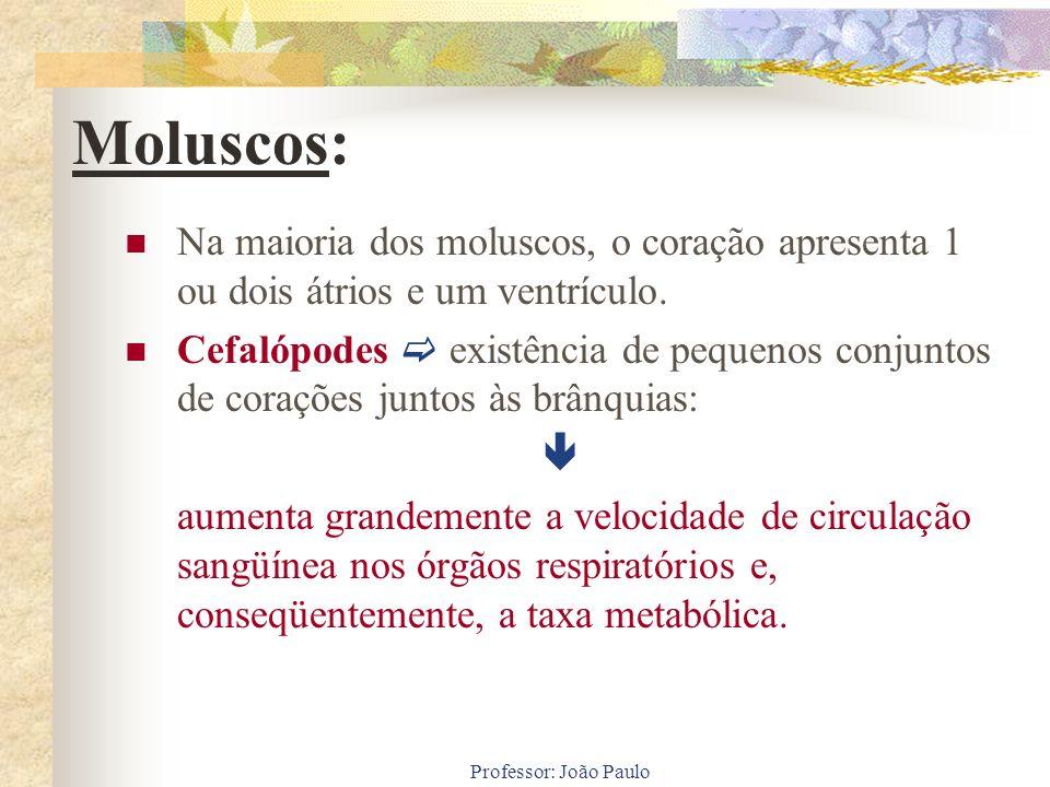 Moluscos: Na maioria dos moluscos, o coração apresenta 1 ou dois átrios e um ventrículo.
