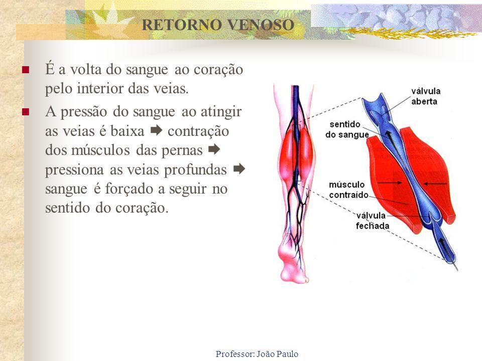 É a volta do sangue ao coração pelo interior das veias.