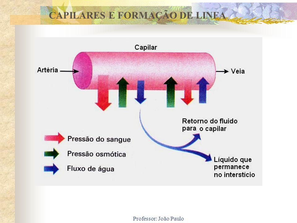 CAPILARES E FORMAÇÃO DE LINFA