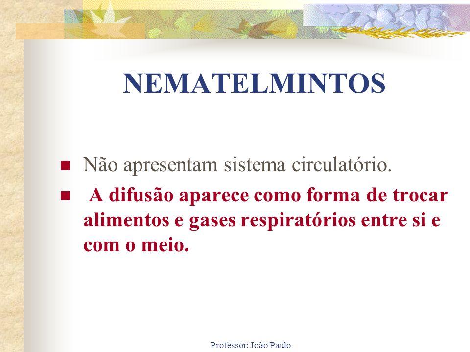 NEMATELMINTOS Não apresentam sistema circulatório.
