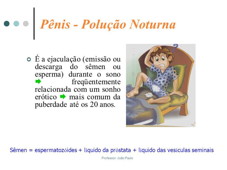 Pênis - Polução Noturna
