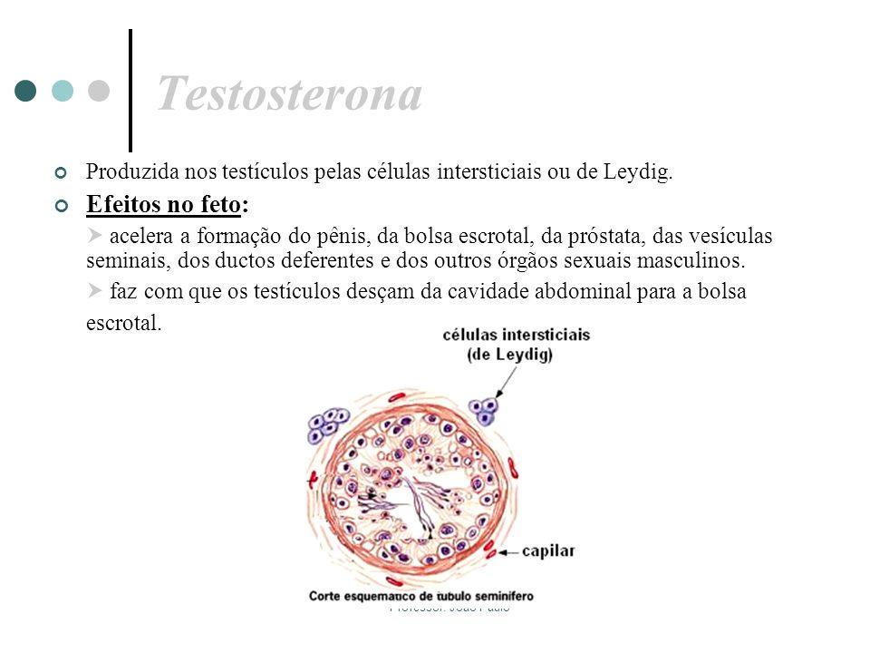 Testosterona Efeitos no feto: