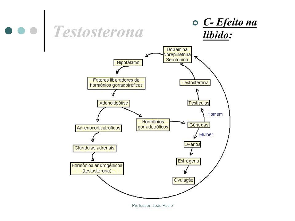 Testosterona C- Efeito na libido: Professor: João Paulo