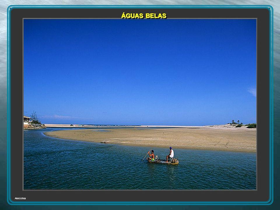 AlexUchoa ÁGUAS BELAS