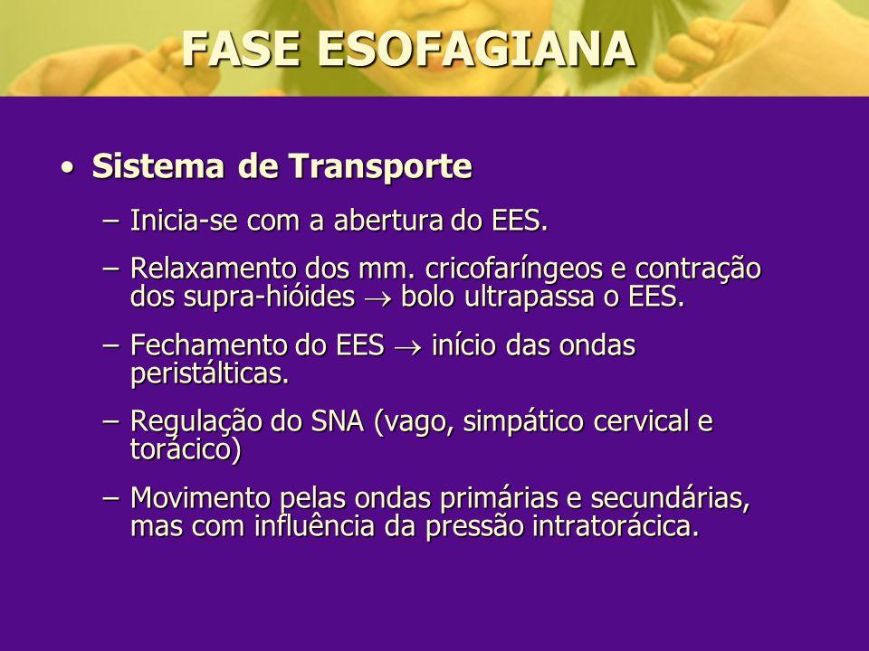 FASE ESOFAGIANA Sistema de Transporte Inicia-se com a abertura do EES.