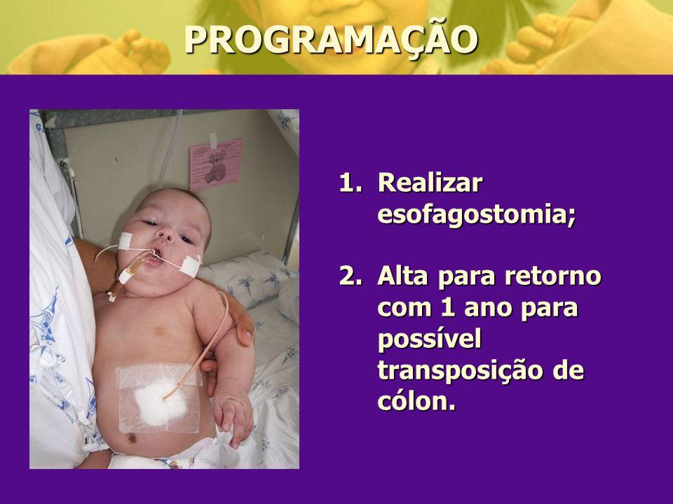 PROGRAMAÇÃO Realizar esofagostomia;