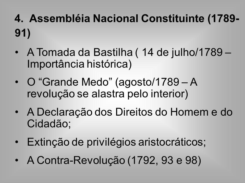 4. Assembléia Nacional Constituinte (1789-91)