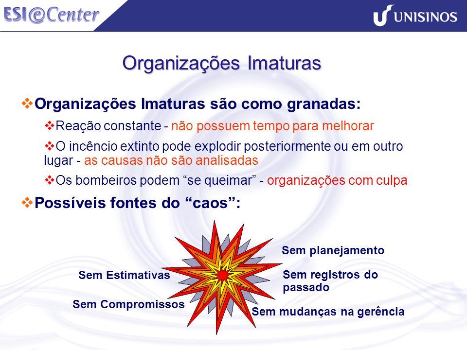 Organizações Imaturas