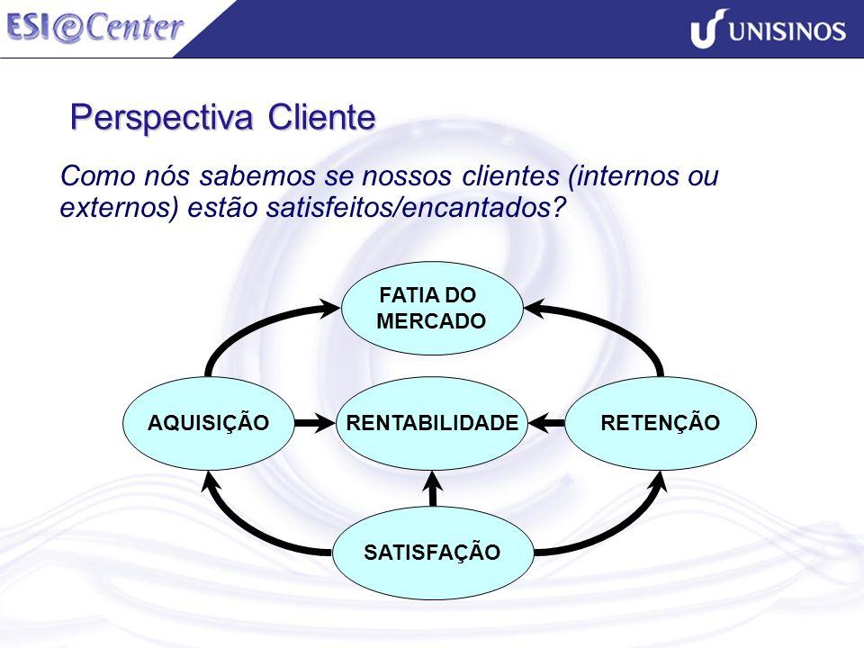 Perspectiva Cliente Como nós sabemos se nossos clientes (internos ou externos) estão satisfeitos/encantados