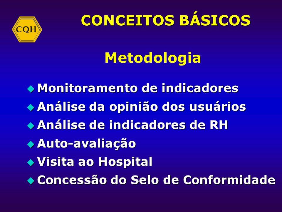 CONCEITOS BÁSICOS Metodologia