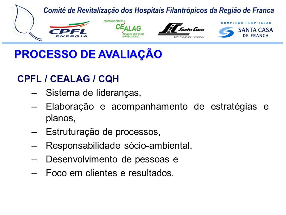 PROCESSO DE AVALIAÇÃO CPFL / CEALAG / CQH Sistema de lideranças,