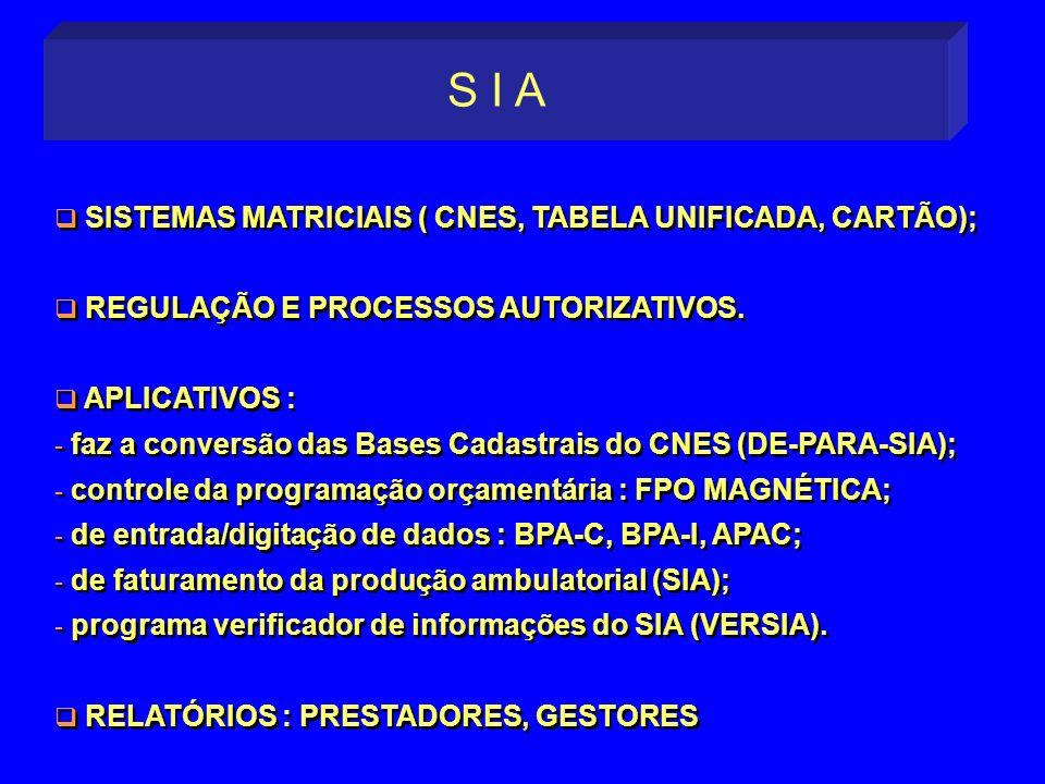 S I A SISTEMAS MATRICIAIS ( CNES, TABELA UNIFICADA, CARTÃO);
