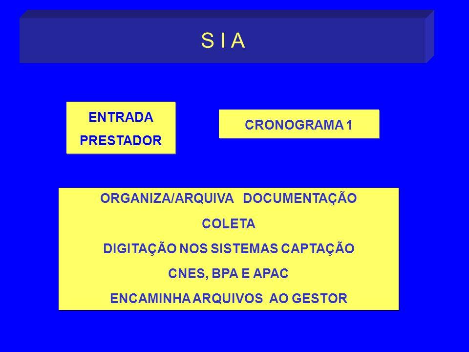 S I A ENTRADA CRONOGRAMA 1 PRESTADOR ORGANIZA/ARQUIVA DOCUMENTAÇÃO