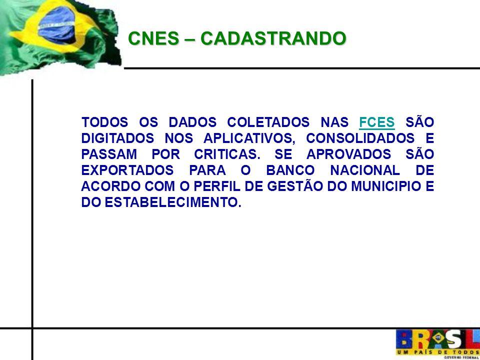 CNES – CADASTRANDO