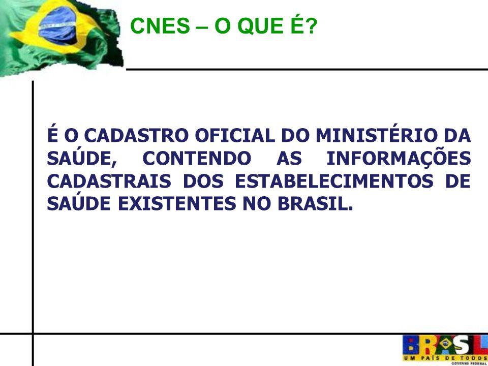 CNES – O QUE É.