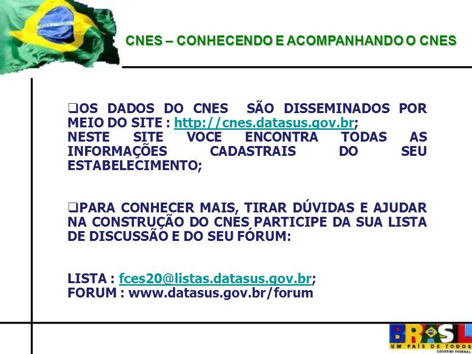 CNES – CONHECENDO E ACOMPANHANDO O CNES