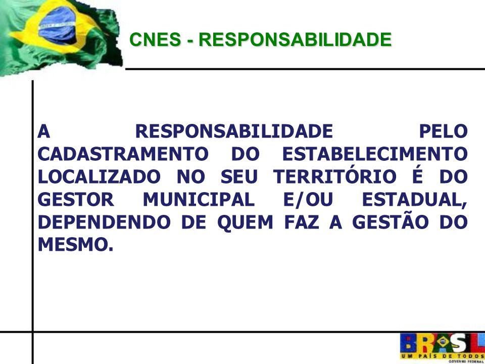 CNES - RESPONSABILIDADE